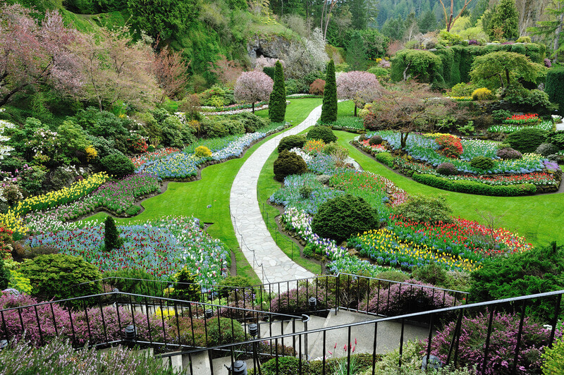 Spring gardening here is what to do in may falconcrest for Landscaping rocks victoria bc