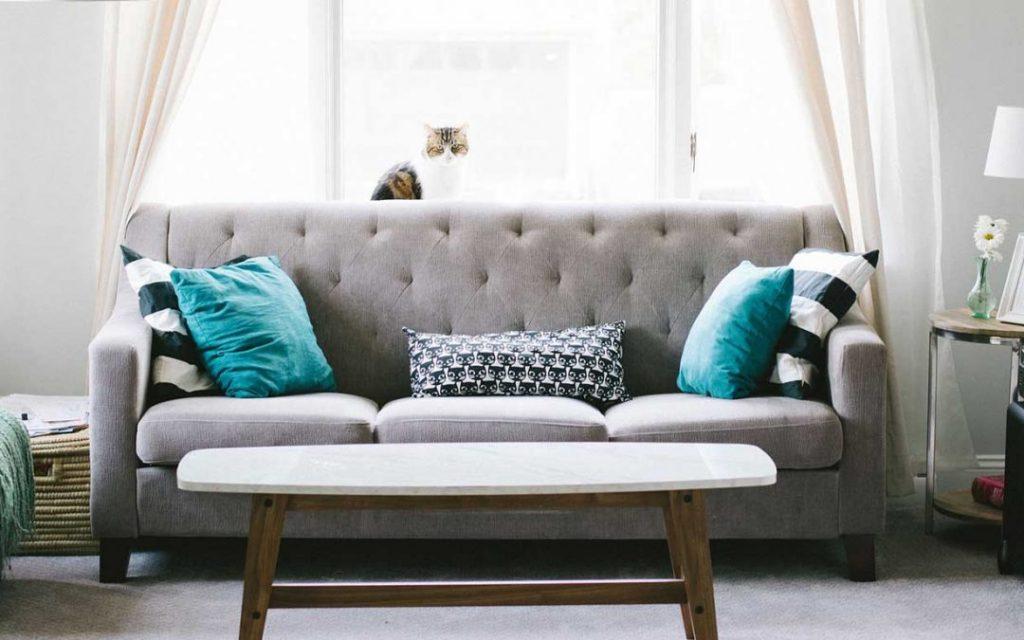 sofa trends